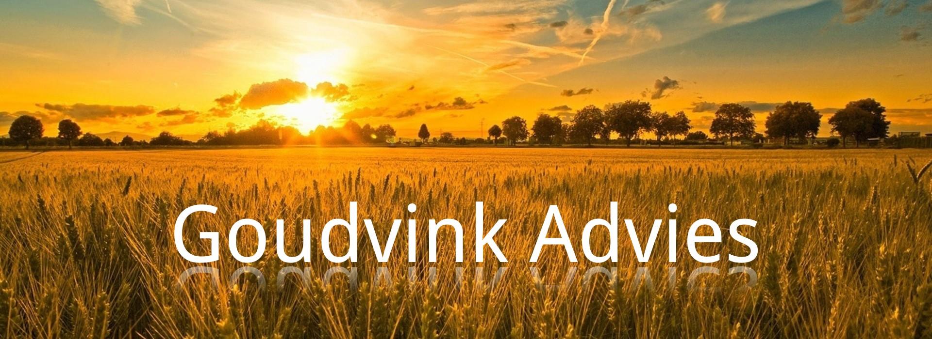 Goudvink Advies